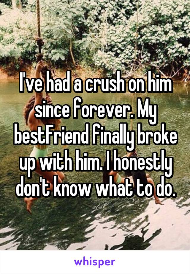I've had a crush on him since forever. My bestFriend finally broke up with him. I honestly don't know what to do.