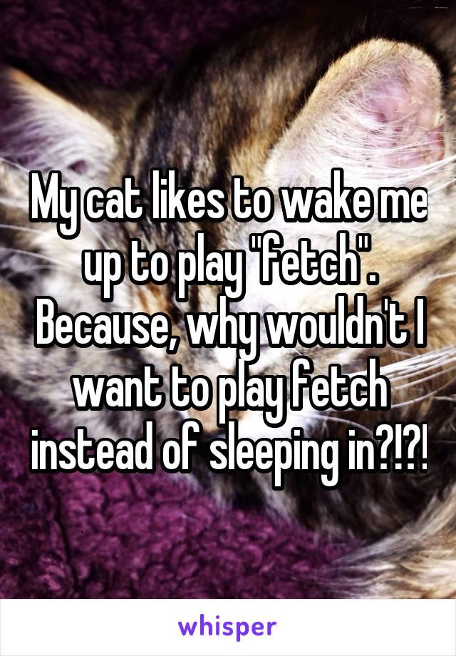 Sleeping Fetch