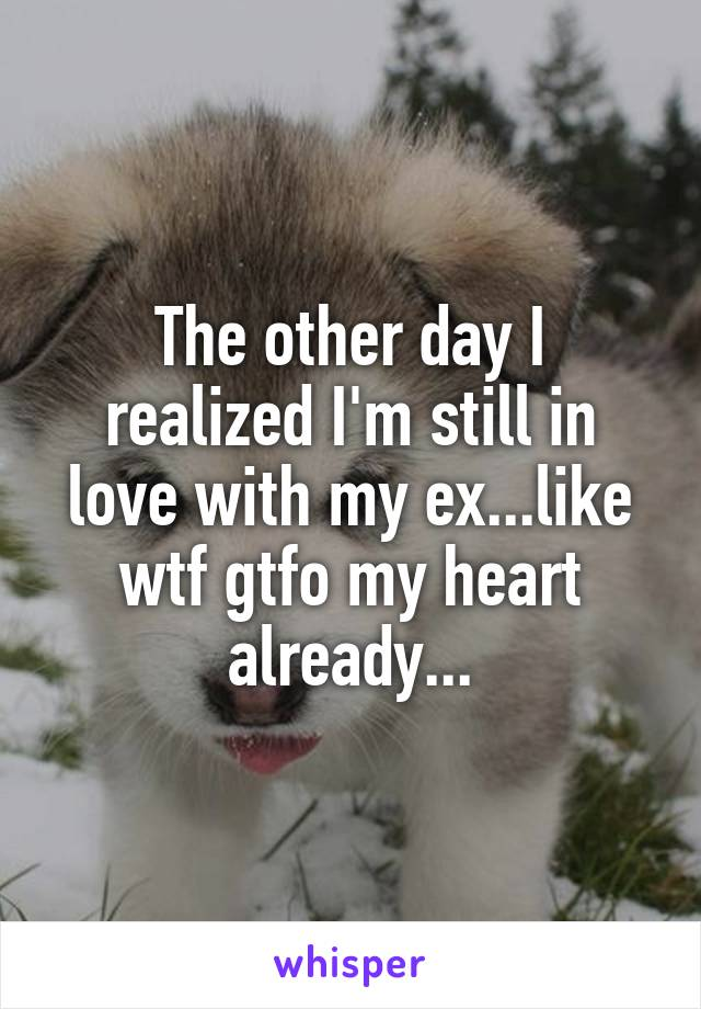 The other day I realized I'm still in love with my ex...like wtf gtfo my heart already...