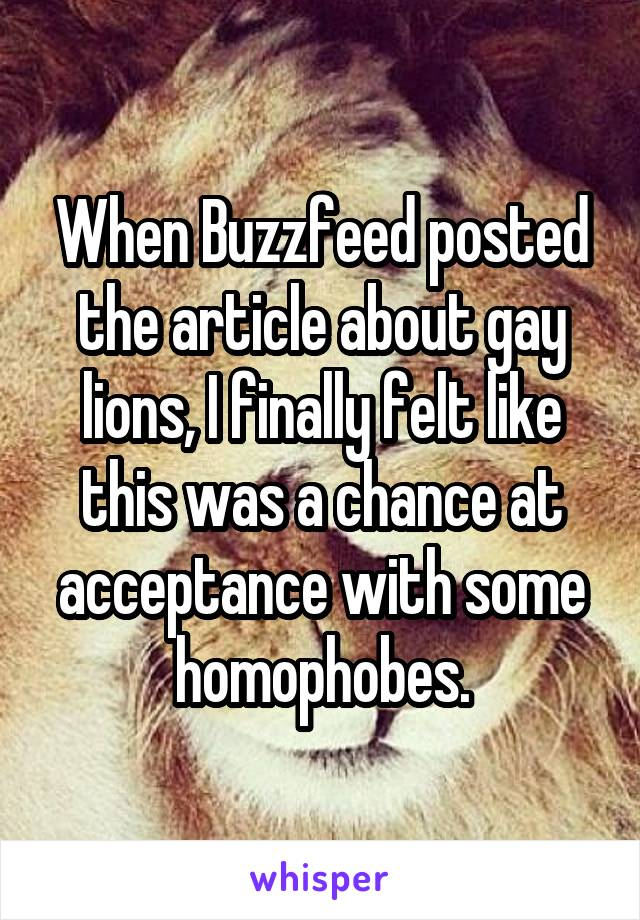 When Buzzfeed posted the article about gay lions, I finally felt like this was a chance at acceptance with some homophobes.