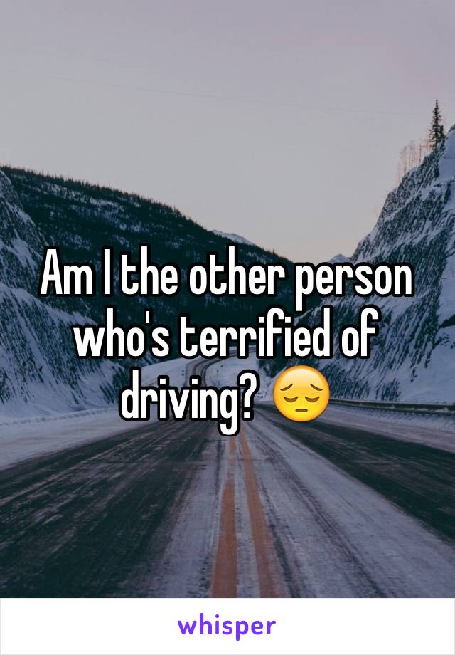 Am I the other person who's terrified of driving? 😔