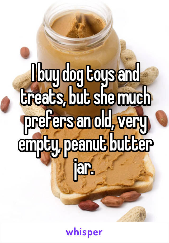 I buy dog toys and treats, but she much prefers an old, very empty, peanut butter jar.