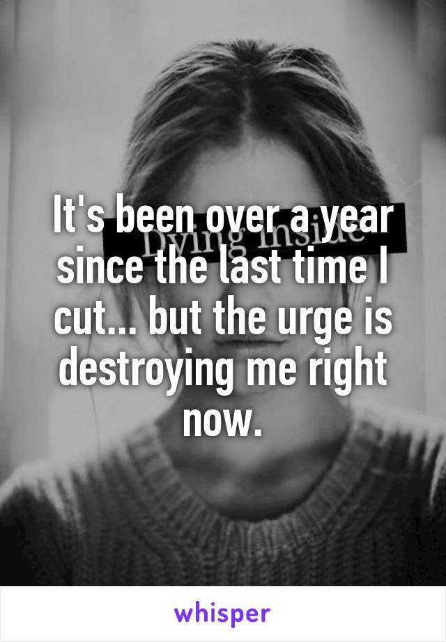 It's been over a year since the last time I cut... but the urge is destroying me right now.