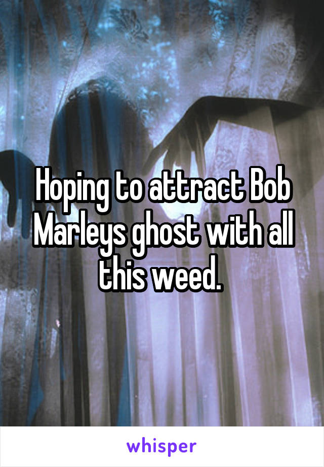 Hoping to attract Bob Marleys ghost with all this weed.