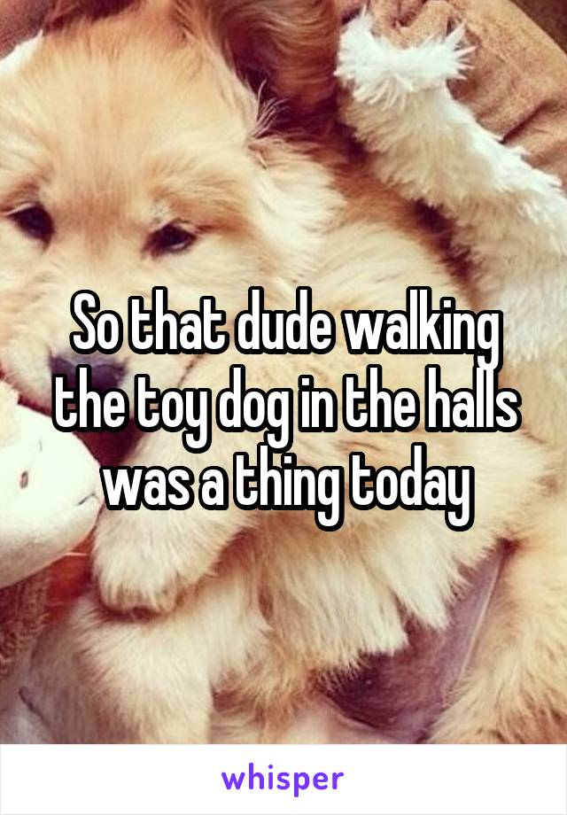 So that dude walking the toy dog in the halls was a thing today
