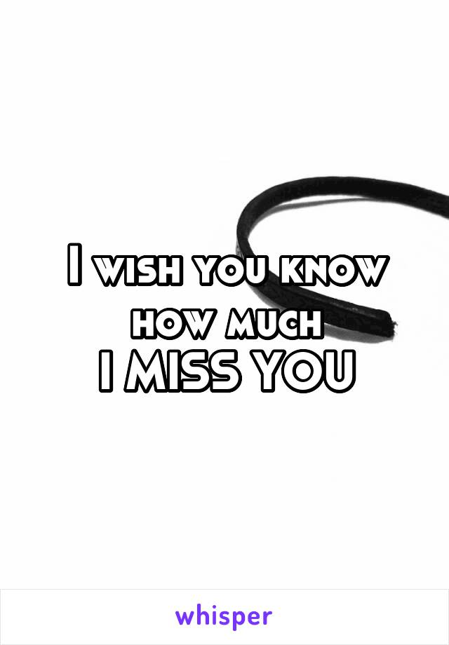 I wish you know how much I MISS YOU