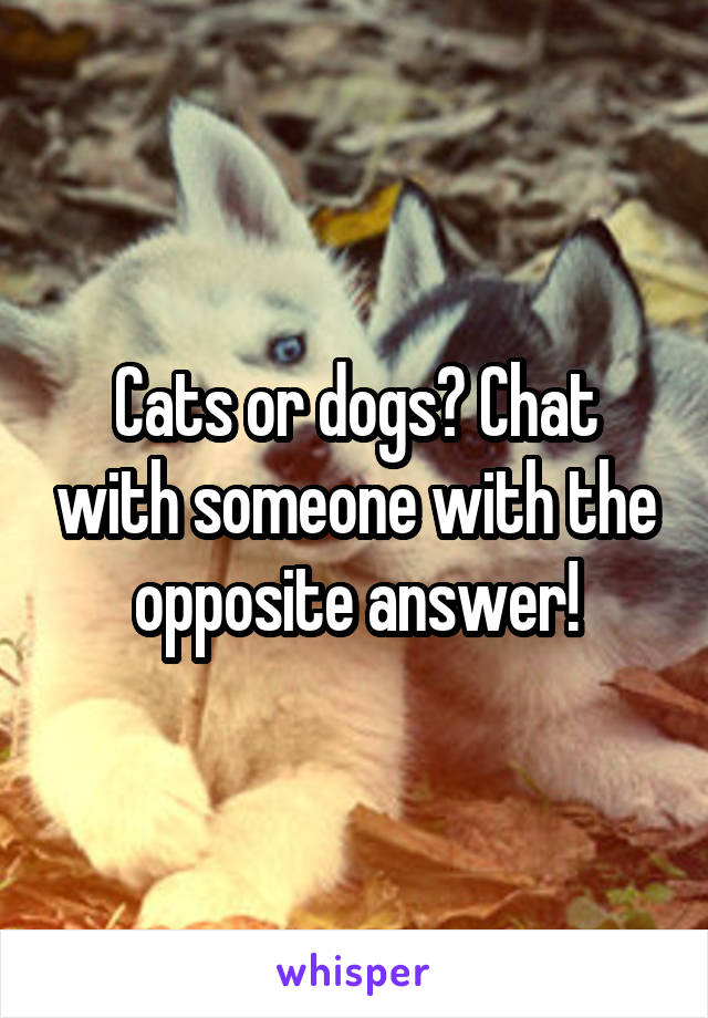 Cats or dogs? Chat with someone with the opposite answer!