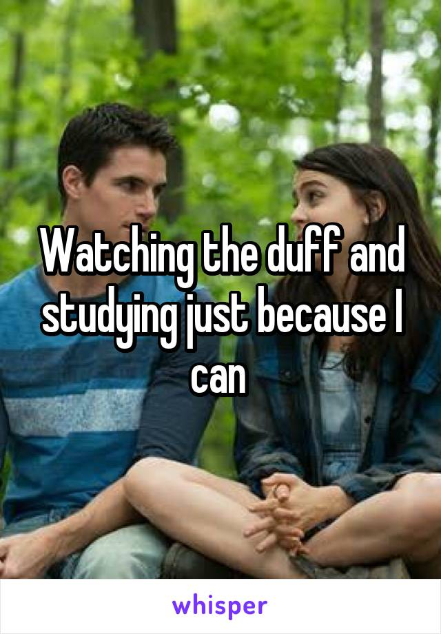 Watching the duff and studying just because I can