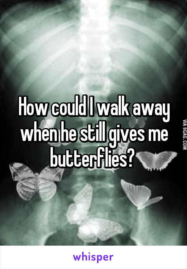 How could I walk away when he still gives me butterflies?