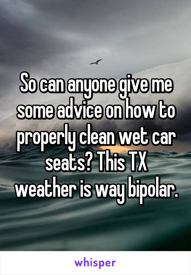 So can anyone give me some advice on how to properly clean wet car seats? This TX weather is way bipolar.