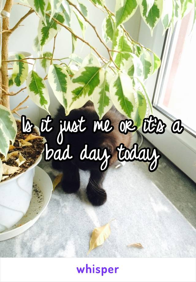 Is it just me or it's a bad day today