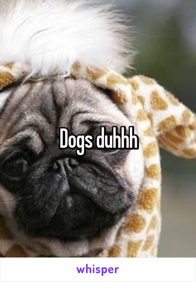 Dogs duhhh