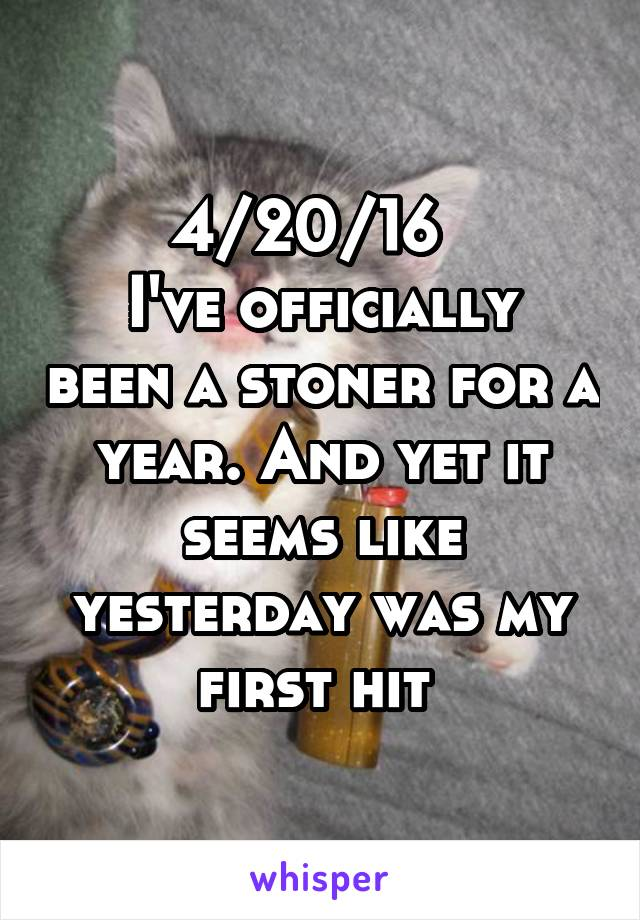 4/20/16   I've officially been a stoner for a year. And yet it seems like yesterday was my first hit