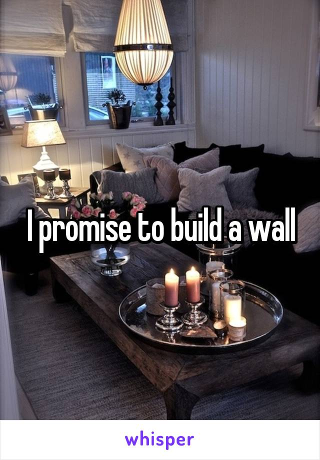 I promise to build a wall