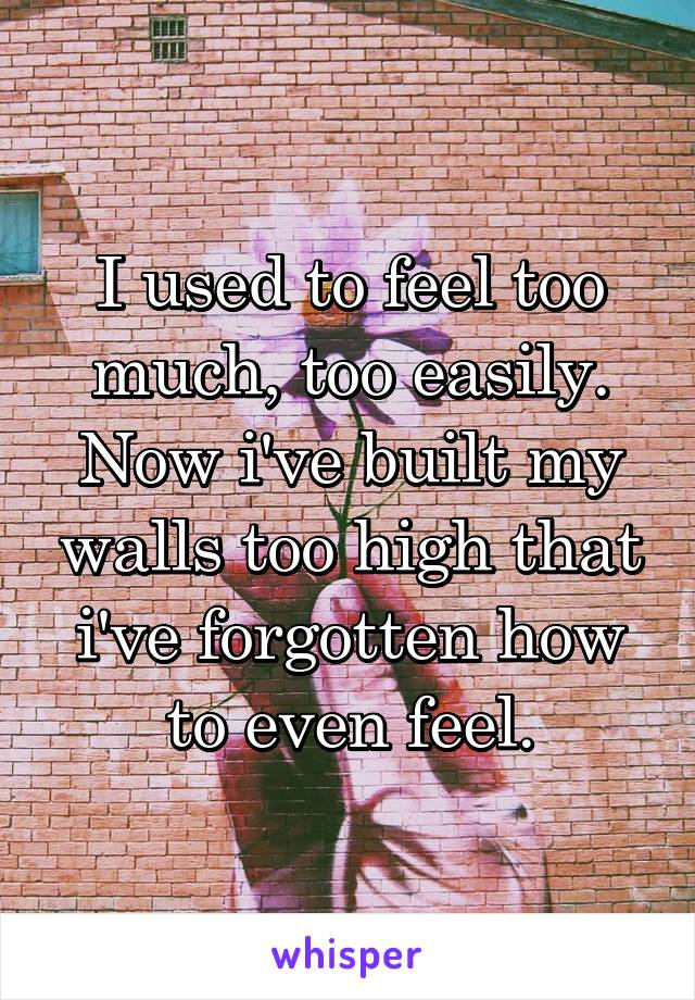 I used to feel too much, too easily. Now i've built my walls too high that i've forgotten how to even feel.