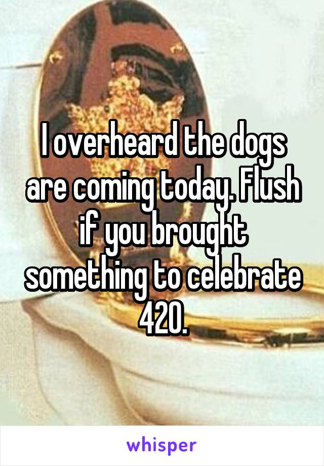 I overheard the dogs are coming today. Flush if you brought something to celebrate 420.