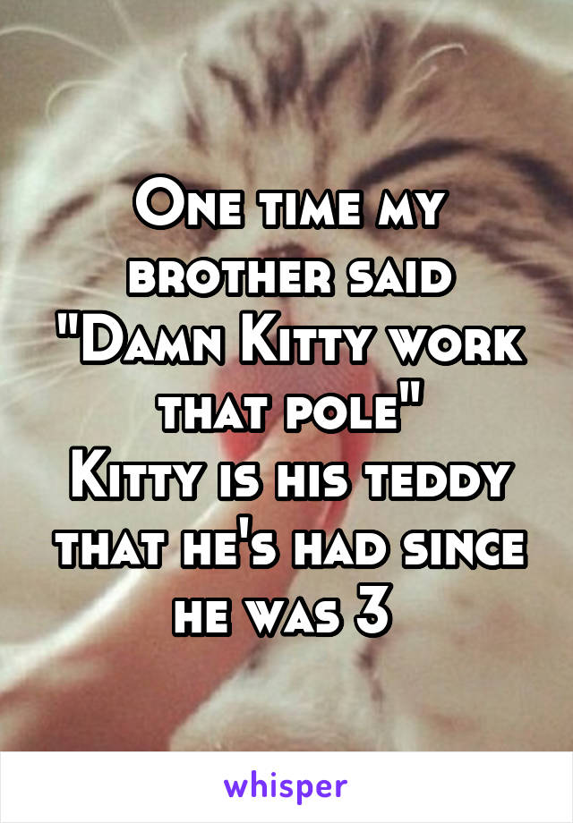 "One time my brother said ""Damn Kitty work that pole"" Kitty is his teddy that he's had since he was 3"