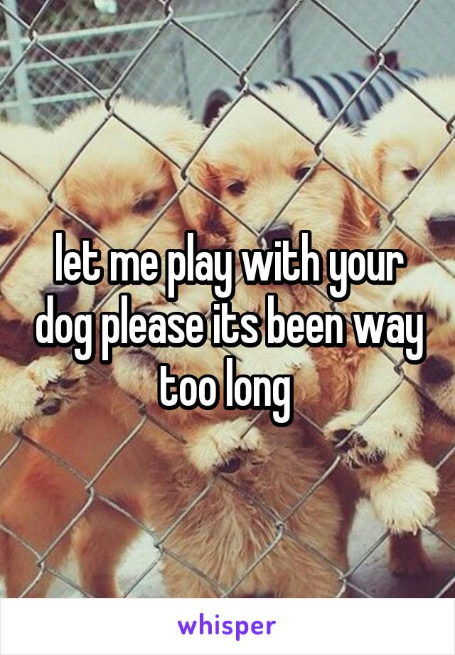 let me play with your dog please its been way too long