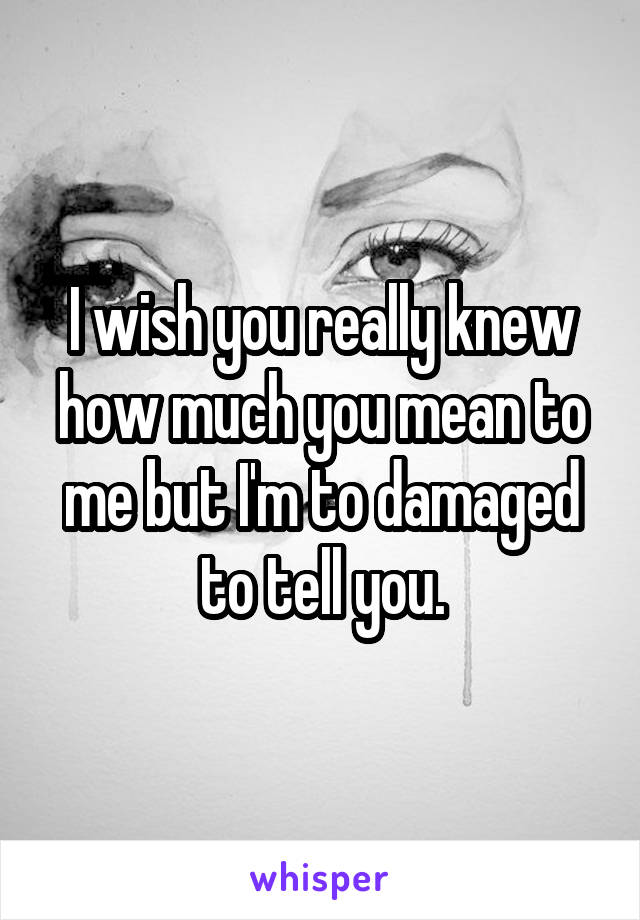 I wish you really knew how much you mean to me but I'm to damaged to tell you.