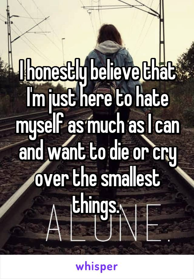 I honestly believe that I'm just here to hate myself as much as I can and want to die or cry over the smallest things.