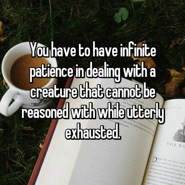 You have to have infinite patience in dealing with a creature that cannot be reasoned with while utterly exhausted.