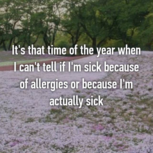 It's that time of the year when I can't tell if I'm sick because of allergies or because I'm actually sick