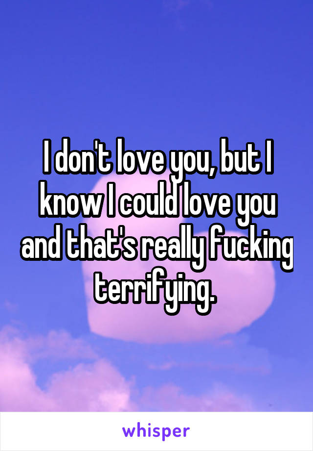 I don't love you, but I know I could love you and that's really fucking terrifying.