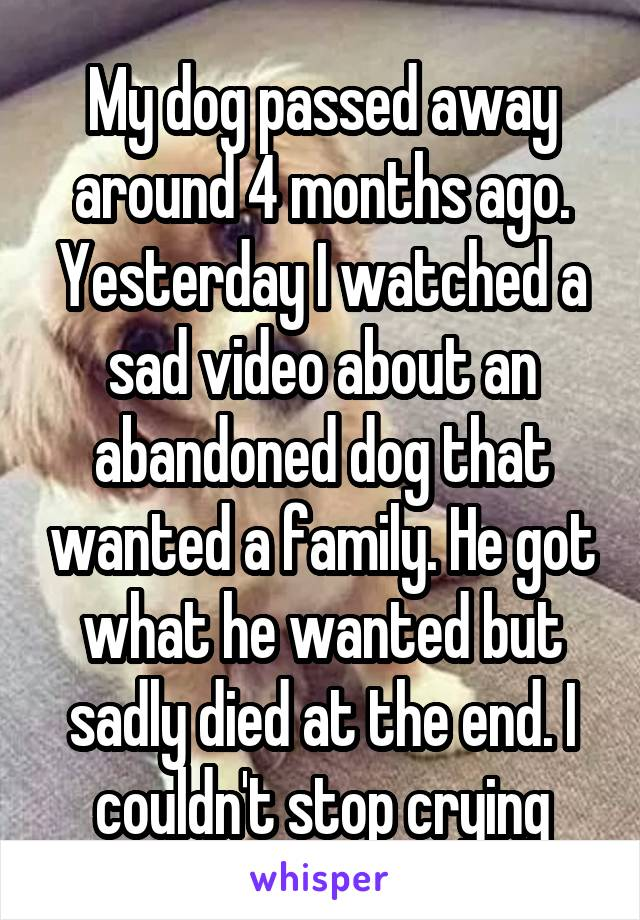 My dog passed away around 4 months ago. Yesterday I watched a sad video about an abandoned dog that wanted a family. He got what he wanted but sadly died at the end. I couldn't stop crying