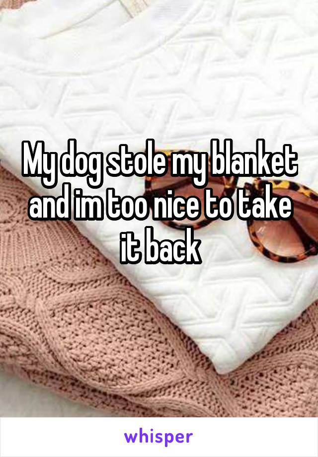 My dog stole my blanket and im too nice to take it back