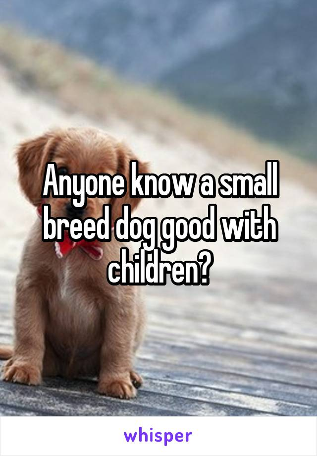 Anyone know a small breed dog good with children?