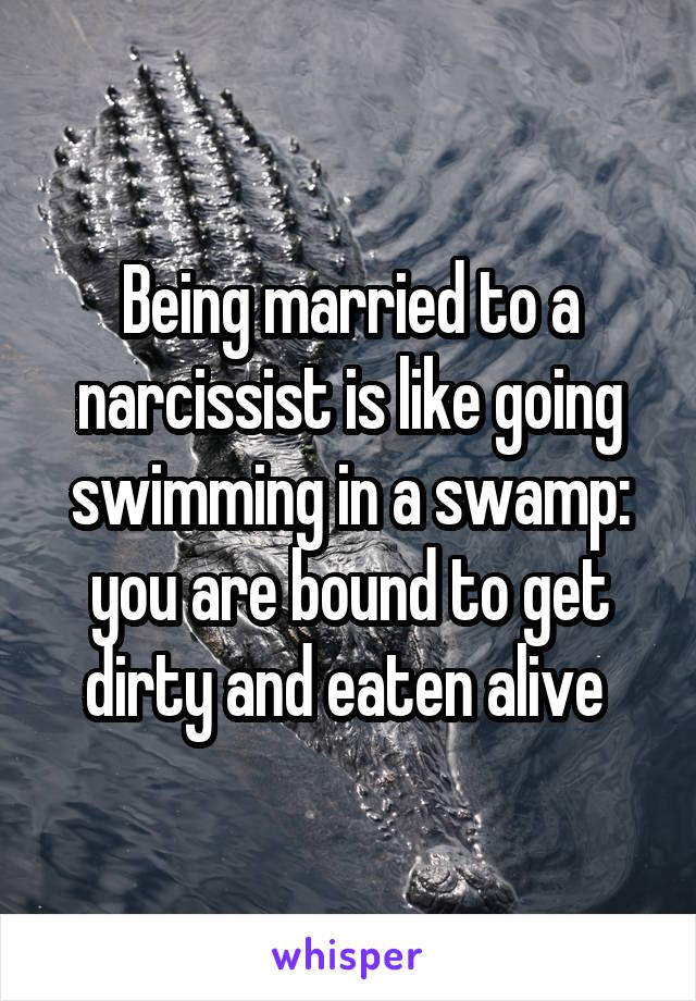Being married to a narcissist is like going swimming in a swamp: you are bound to get dirty and eaten alive