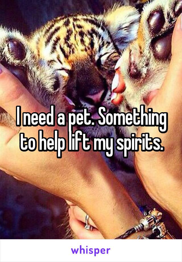 I need a pet. Something to help lift my spirits.