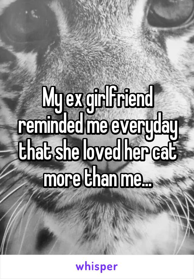 My ex girlfriend reminded me everyday that she loved her cat more than me...