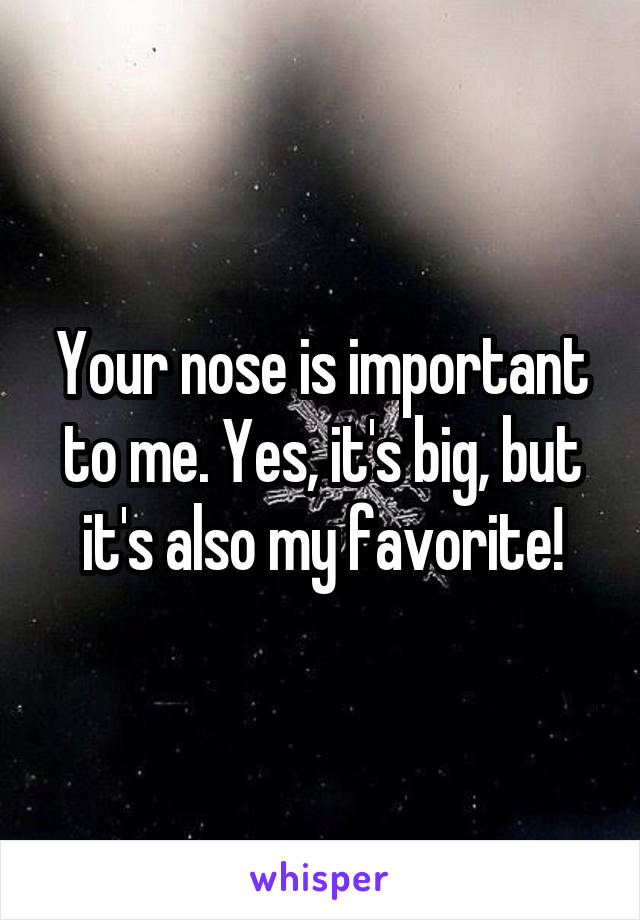 Your nose is important to me. Yes, it's big, but it's also my favorite!