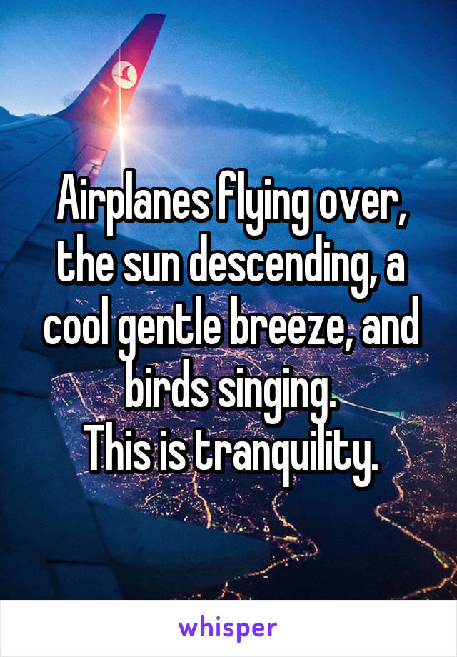 Airplanes flying over, the sun descending, a cool gentle breeze, and birds singing. This is tranquility.