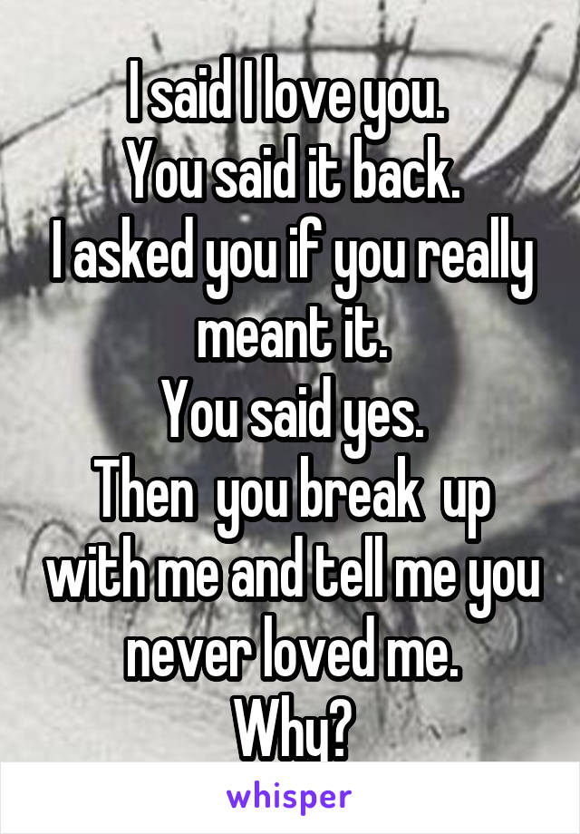 I said I love you.  You said it back. I asked you if you really meant it. You said yes. Then  you break  up with me and tell me you never loved me. Why?