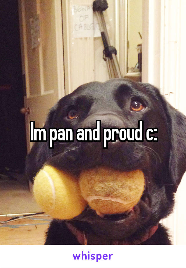 Im pan and proud c: