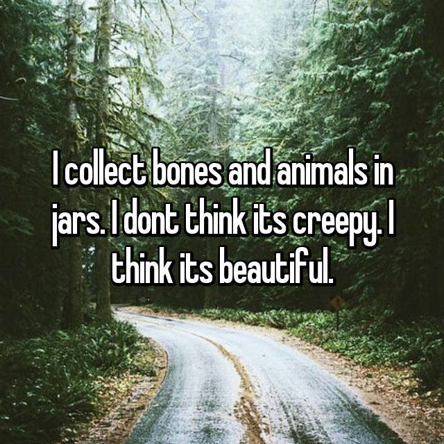 I collect bones and animals in jars. I dont think its creepy. I think its beautiful.