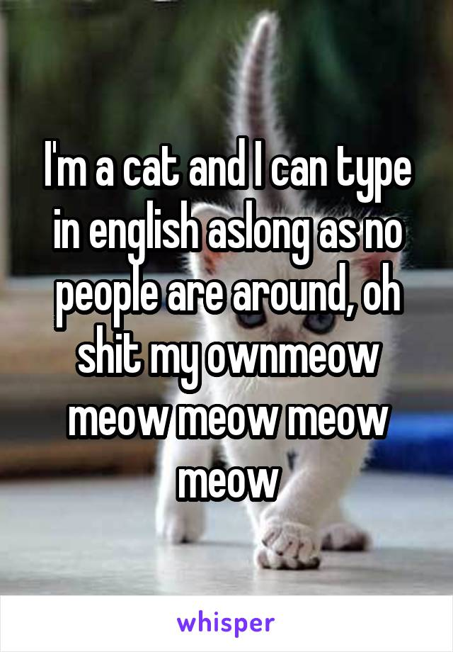 I'm a cat and I can type in english aslong as no people are around, oh shit my ownmeow meow meow meow meow
