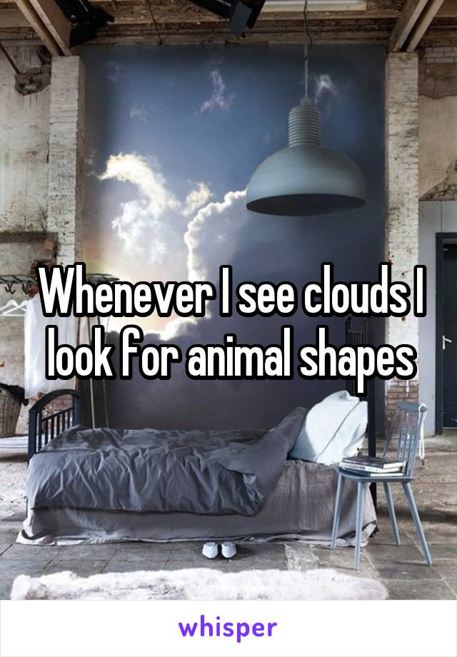 Whenever I see clouds I look for animal shapes