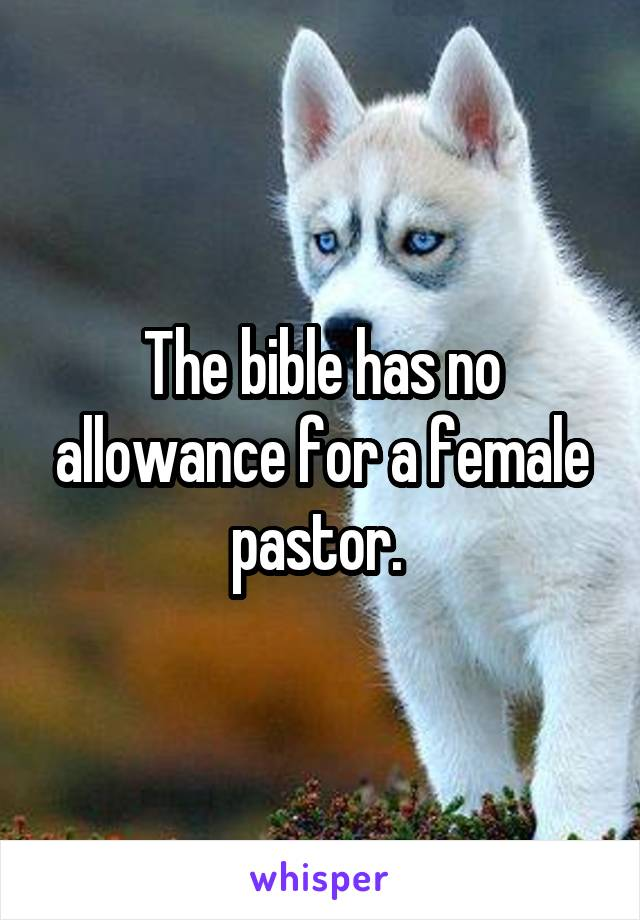 The bible has no allowance for a female pastor.