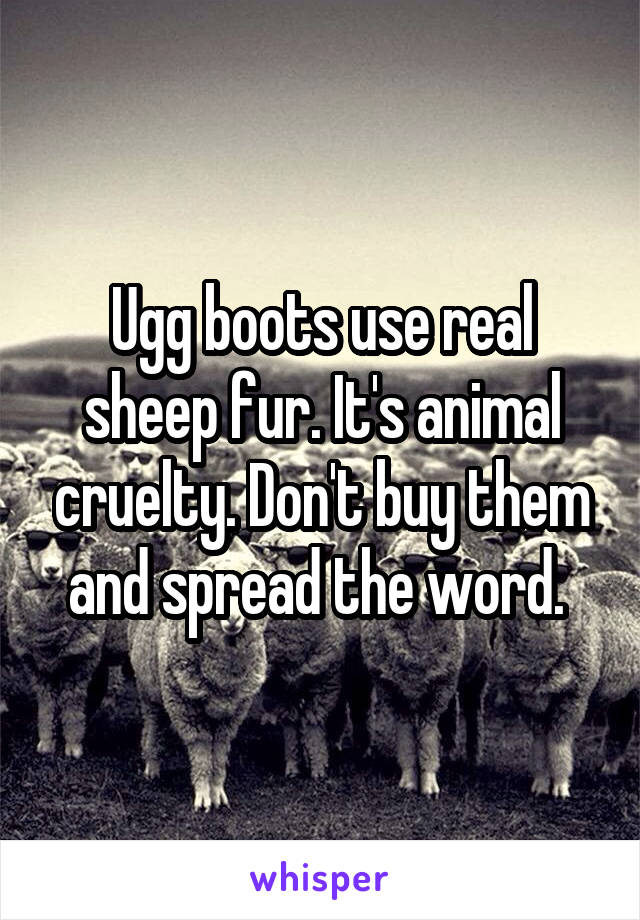 Ugg boots use real sheep fur. It's animal cruelty. Don't buy them and spread the word.