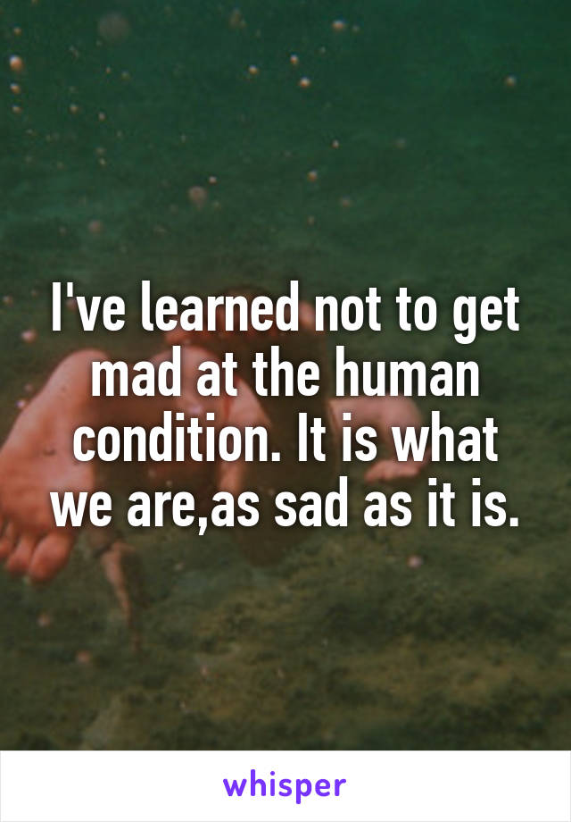 I've learned not to get mad at the human condition. It is what we are,as sad as it is.
