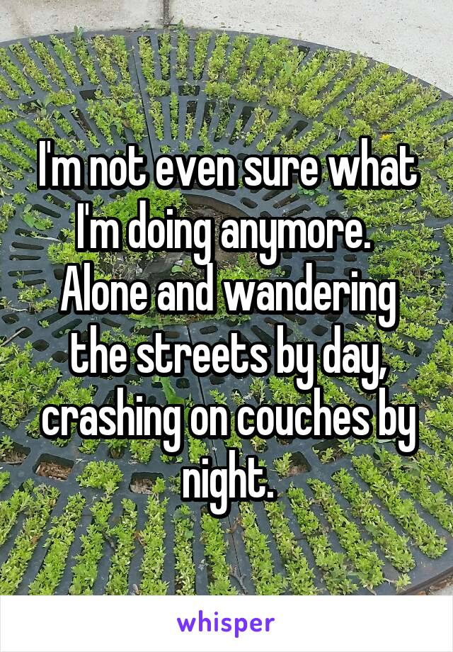 I'm not even sure what I'm doing anymore.  Alone and wandering the streets by day, crashing on couches by night.