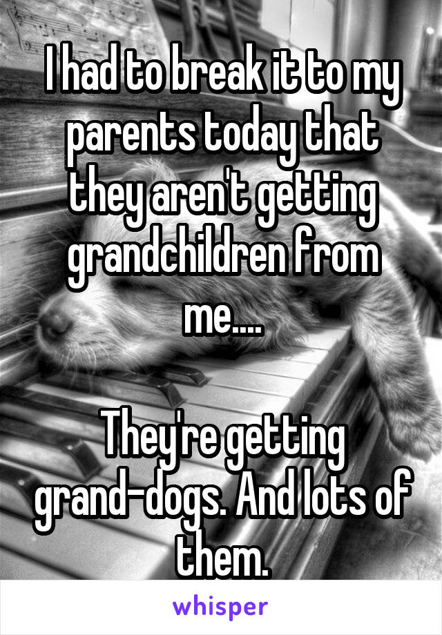 I had to break it to my parents today that they aren't getting grandchildren from me....  They're getting grand-dogs. And lots of them.