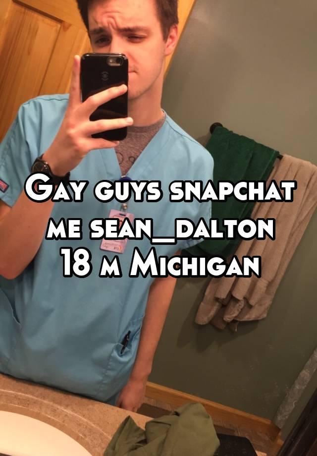 gay dating in michigan