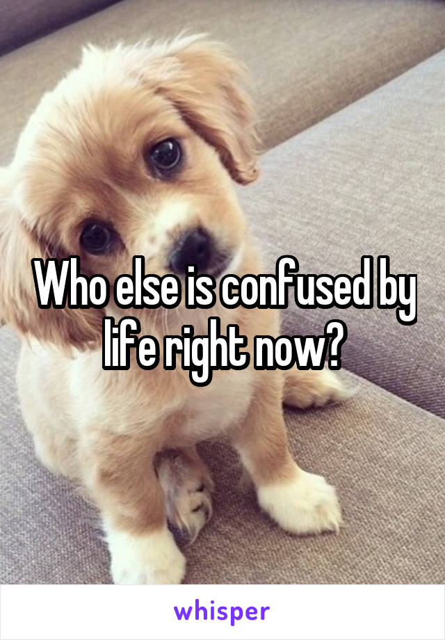 Who else is confused by life right now?