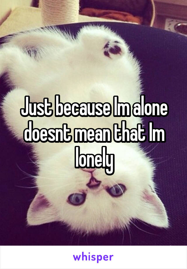 Just because Im alone doesnt mean that Im lonely