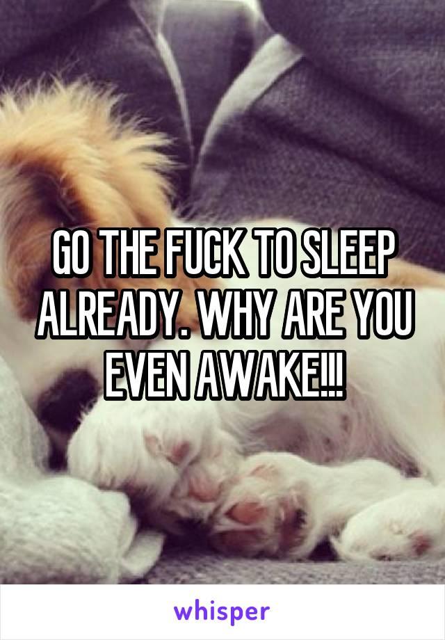 GO THE FUCK TO SLEEP ALREADY. WHY ARE YOU EVEN AWAKE!!!