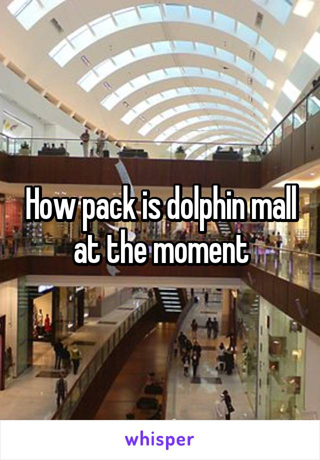 How pack is dolphin mall at the moment
